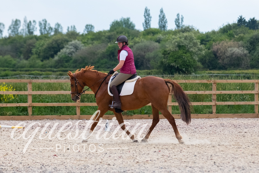 Brook Stud Dressage